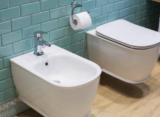 Modern ceramic bidet and lavatory - interior of the restroom, bathroom, toilet
