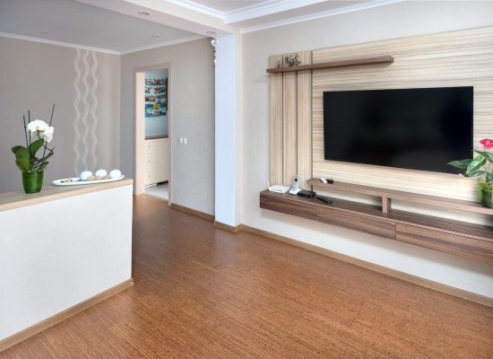Modern apartment living room with large TV over wooden cabinet Orchid, cork floorboards and door to corridor. Real room of real estate, residential house.